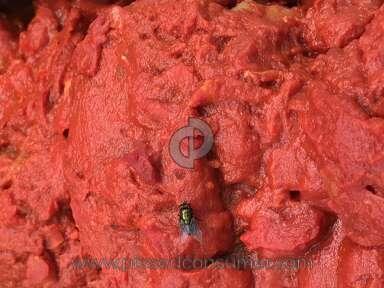 ACME Markets - Green Fly Inside Deli Fridge