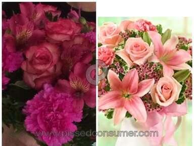 1800flowers Arrangement review 43875