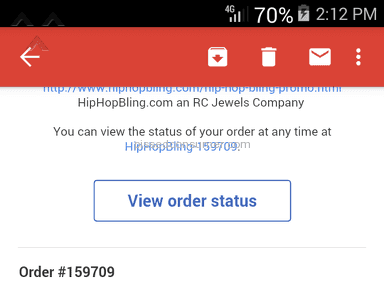 Hip Hop Bling - Ups Delivery Service Review
