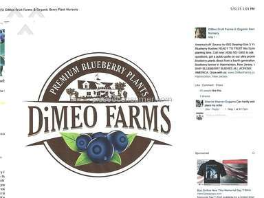 Dimeo Farms Owner review 71913