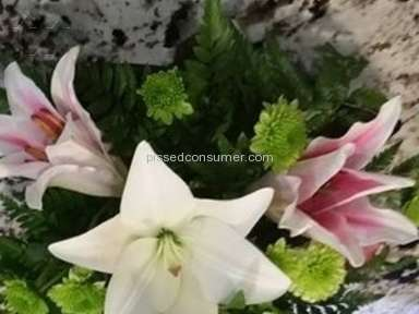 Teleflora Zen Artistry Arrangement Review from Pittsburgh, Pennsylvania