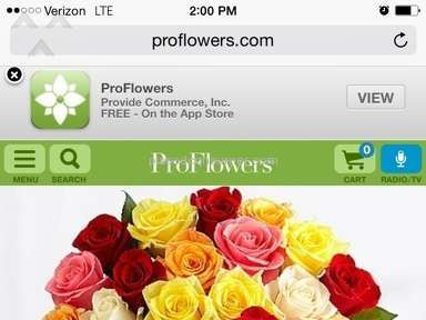 Proflowers Flowers review 70953