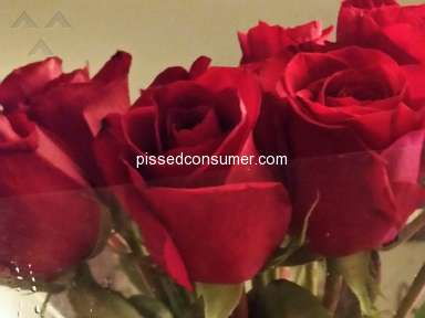 Instacart Delivery Service review 329106