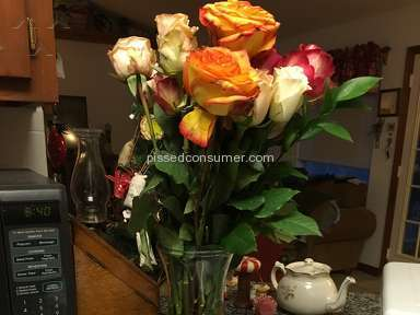 Avasflowers Roses Flowers review 192646