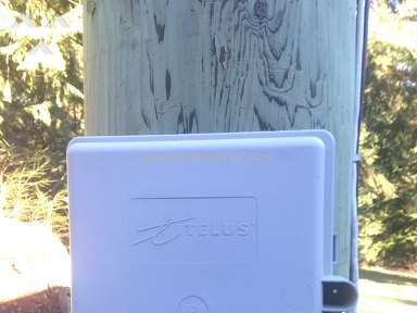 Telus Communications - Internet Service Review