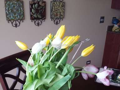 Avasflowers Bouquet review 72609