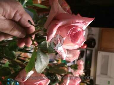 ProFlowers Bouquet review 114599