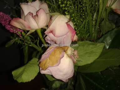 Prestige Flowers, avoid like the plague!