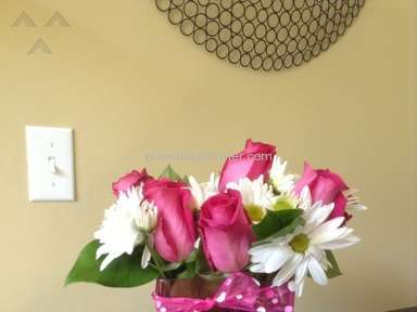 Proflowers Arrangement review 26987