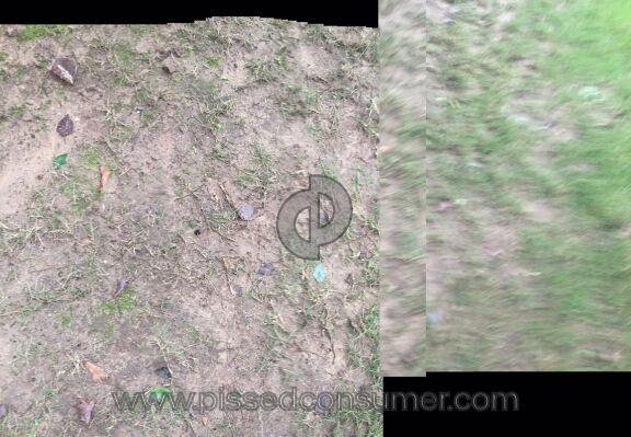 Trugreen Lawn Service