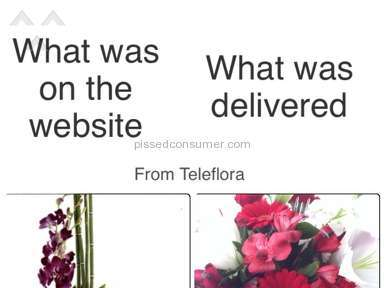 Teleflora Arrangement review 71529