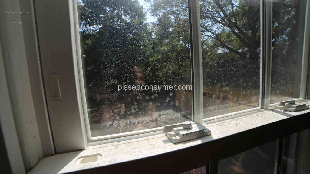 Harvey Building Products Window Reviews and Complaints