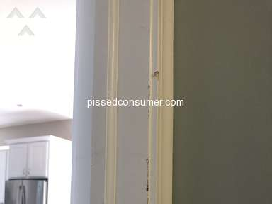 Pack And Load Services - Damaged my walls and then said they were leaving