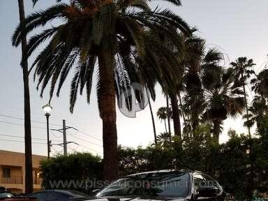 Turo - Maserati in LA
