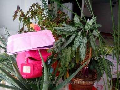 Dhgate Bag review 207502
