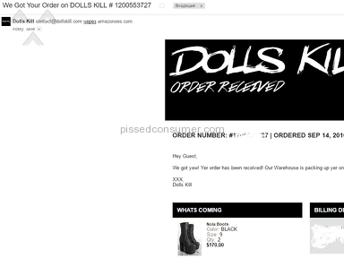 Dolls Kill - I was completely bewildered by their supporting.