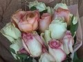 Avasflowers - Delivery Service Review from Wildwood, Florida