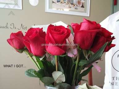 Avasflowers Dozen Red Roses Arrangement review 212612