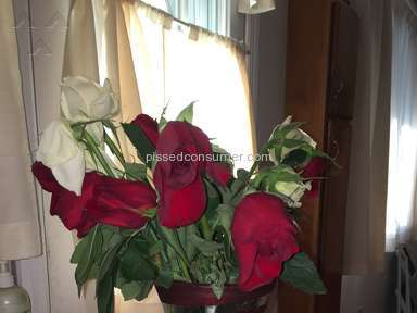 ProFlowers Arrangement review 182600