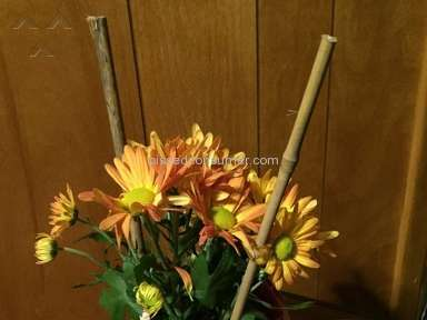 Proflowers Flowers review 112075