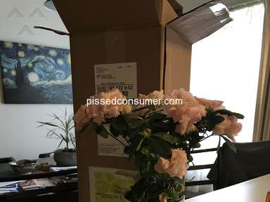 ProPlants Flowers review 290872