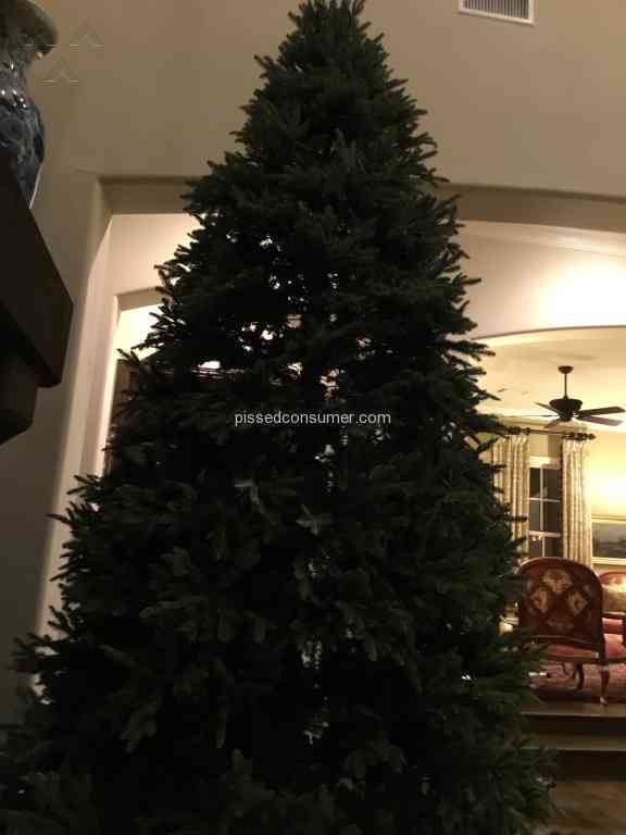 Balsam Hill Christmas Tree.Balsam Hill Fraser Fir Christmas Tree