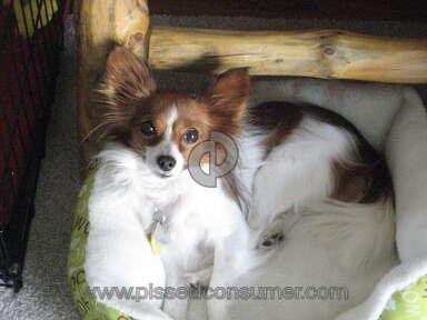 Petsmart Pet Stores review 90783