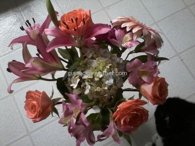 Teleflora Arrangement review 7221