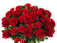 From You Flowers - Bouquet Review from Slidell, Louisiana