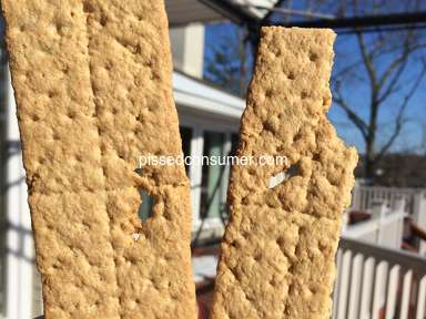 Nabisco Honey Maid Grahams - Recipe disaster