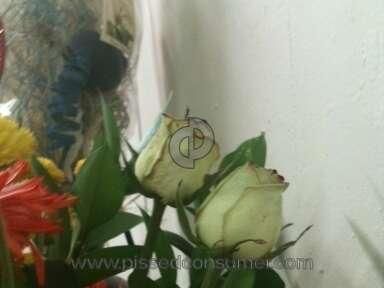 Proflowers Bouquet review 12495