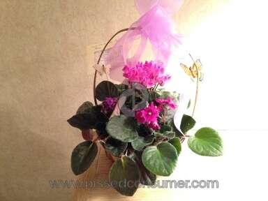 Flowershopping Arrangement review 57523
