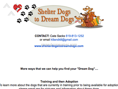 Shelter Dogs To Dream Dogs Dog Training review 127341