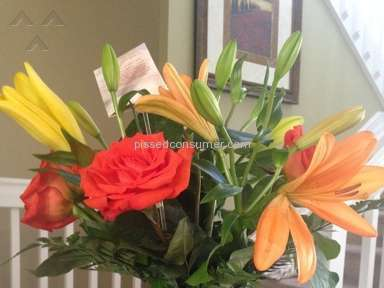 Wesley Berry Flowers Flowers / Florist review 67707