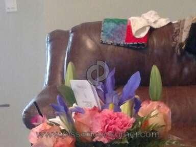 Avasflowers Beautiful Blooms Bouquet Arrangement review 142504