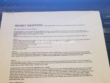 Shadow Shopper E-commerce review 314402