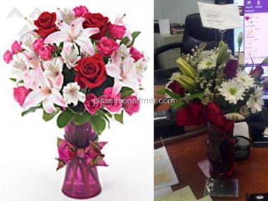 Proflowers Flowers review 6073