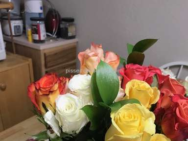 Avasflowers Roses Flowers review 207736