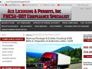 Ace Licensing And Permits Professional Services review 76831