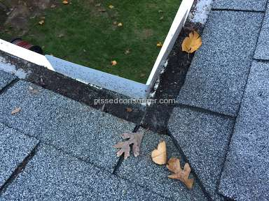 Leaffilter North Gutter Guard review 240694