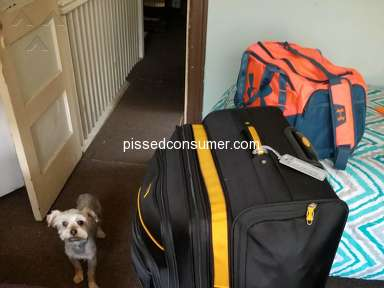 Greyhound Baggage Policy review 311522