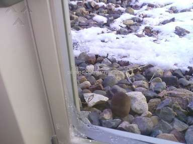 Lindsay Windows Window review 139533