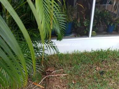TruGreen Landscaping and Gardening review 877134