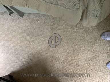 Home Depot Carpet Warranty review 711889