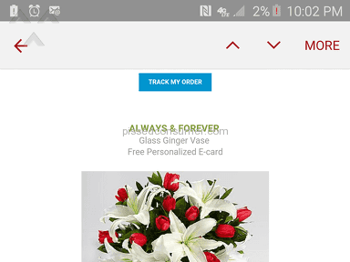 Proflowers Always And Forever Arrangement review 142616