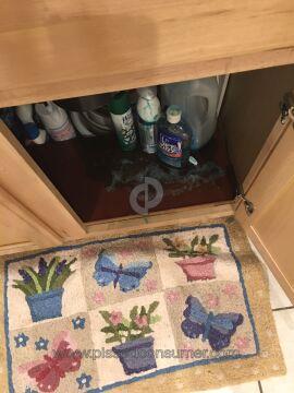 Dawn Dish Platinum Liquid Dishwashing Detergent