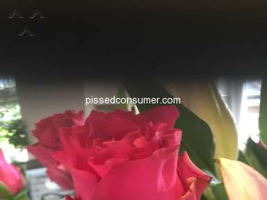 Prestige Flowers - Complaint with poor quality flowers