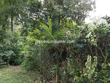 Jax 1 Lawn Care Landscaping and Gardening review 336648