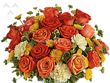 Teleflora Citrus Kissed Arrangement review 177680