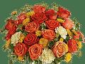 Teleflora Citrus Kissed Flower Arrangement Review